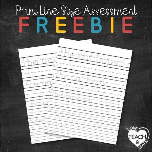 Differentiate Handwriting : PRINT SIZE ASSESSMENT FREEBIE